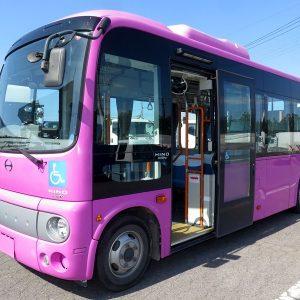 2015 HINO Poncho Bus